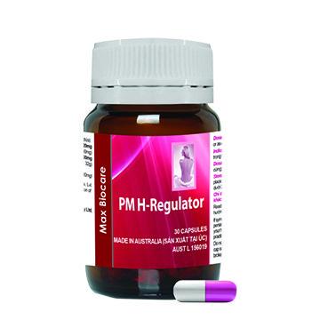 H-Regulator professional brochure VN-5
